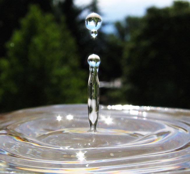 Programa Água Brasil se reúne com parceiros para discutir sobre restauração no Guariroba