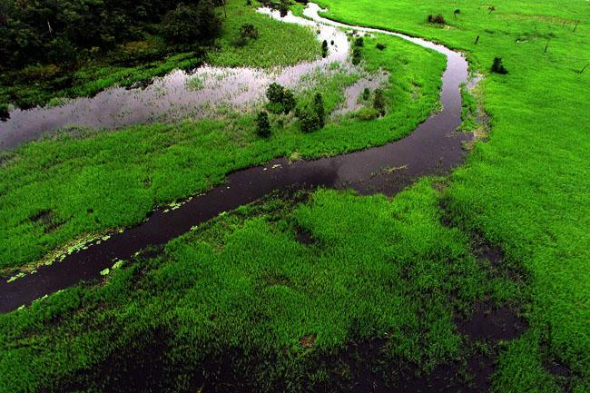 Fundo Clima aprova Plano Anual de Aplicação de Recursos