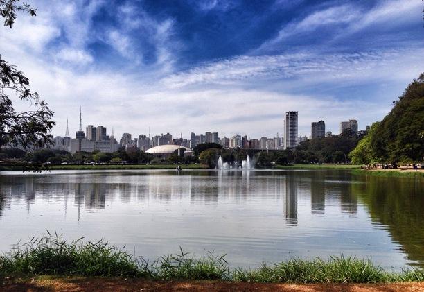Despoluição dos lagos do Parque do Ibirapuera será feita através de biotecnologia