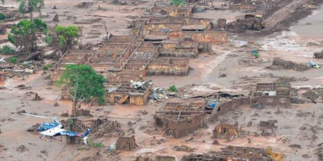 Reflorestar área afetada na tragédia de Mariana exigirá até 20 milhões de mudas