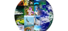 Dia Internacional da Diversidade Biológica alerta para conservação e uso sustentável do planeta