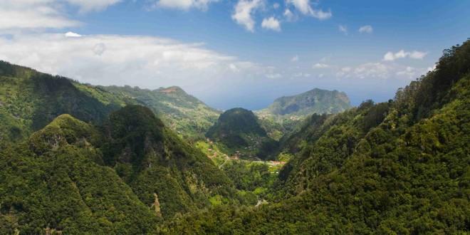 Brasil ganha plataforma de diagnóstico da biodiversidade