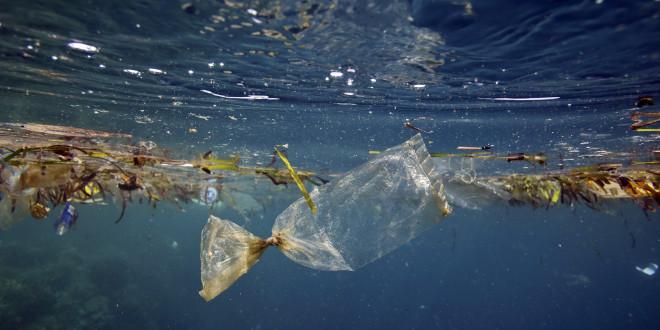 ONU promove curso online sobre como combater lixo marinho