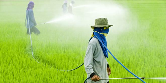 Projeto cria política nacional para redução do uso de agrotóxicos