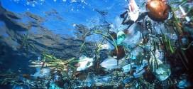 Cientistas desenvolvem técnica que identifica 99% dos plásticos nos oceanos