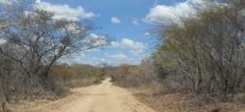Recursos de fundo ambiental poderão financiar projetos na caatinga
