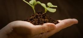 Ambientalistas defendem economia de baixo carbono