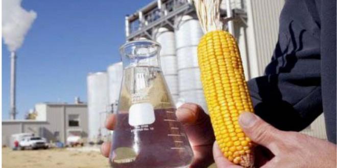 Brasil inaugura sua primeira fábrica de etanol de milho