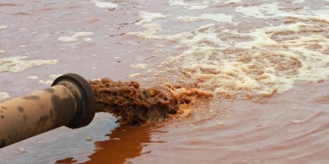 Dia Mundial de Limpeza de Praias e Rios. Como evitar a degradação do meio ambiente?