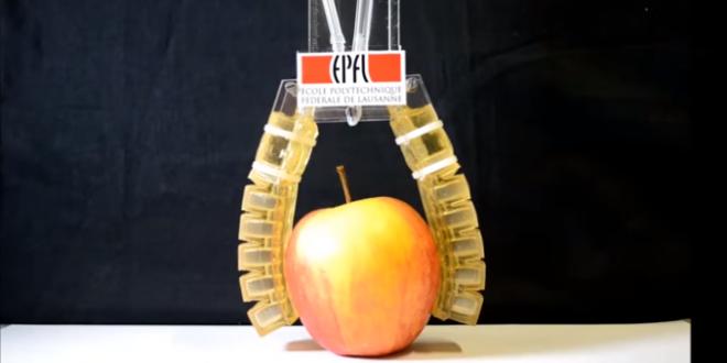 Desenvolvido robô feito de gelatina