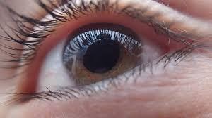 Dia Mundial da Visão destaca a importância da prevenção para diminuir os casos de cegueira