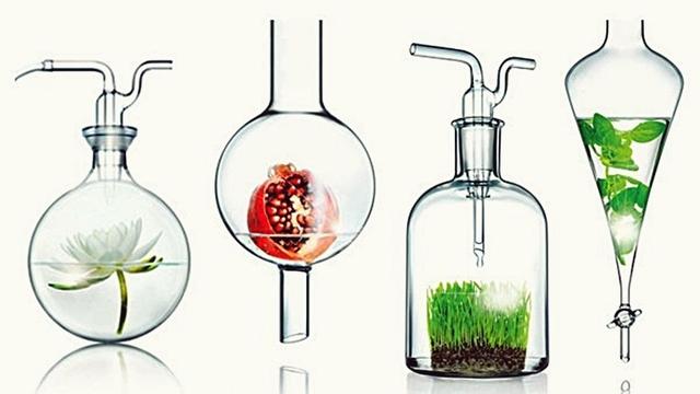Proposta cria regras para comercialização de cosméticos orgânicos