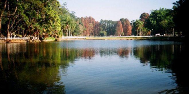 Evento oferece oportunidade de voluntariado em parques de São Paulo