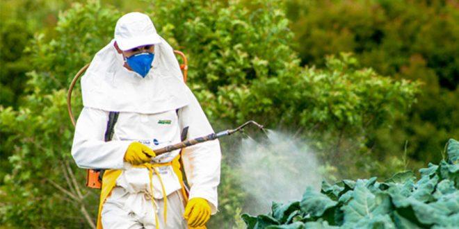 Comissão especial para redução do uso de agrotóxicos realiza audiência