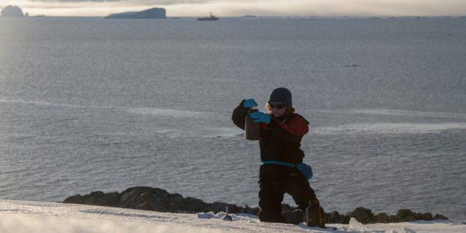 Expedição do Greenpeace encontra produtos químicos e microplásticos na Antártida