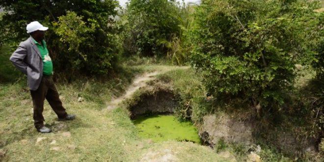 Programa de reabilitação do solo é exemplo para o mundo na Etiópia