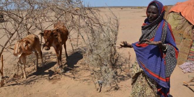 El Niño ameaça 60 milhões de pessoas em países em desenvolvimento