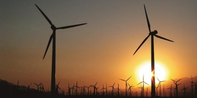Precificação de Carbono: um bom negócio