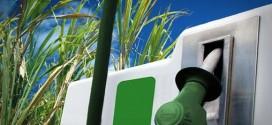 Etanol de segunda geração poderá ser economicamente viável a partir de 2025