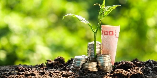 Brasil necessita de modelo econômico sustentável, alertam especialistas