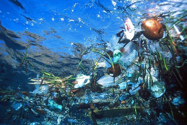Unibes Cultural recebe encontro para debater a pesca fantasma e o lixo plástico nos oceanos