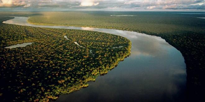 Sustentabilidade da Amazônia é fator-chave para frear mudanças climáticas
