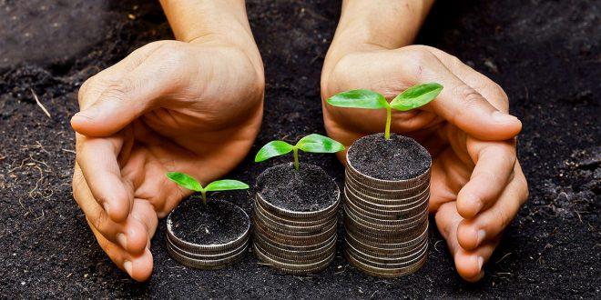 PIB Verde vira lei e vai medir o tamanho do patrimônio ecológico do Brasil
