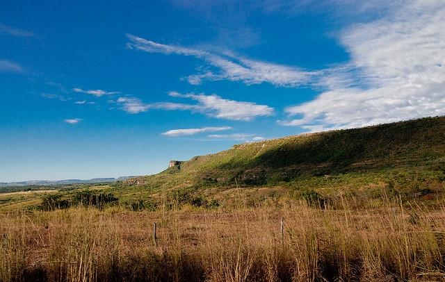 Desenvolvimento sustentável: único caminho para preservação  do Cerrado