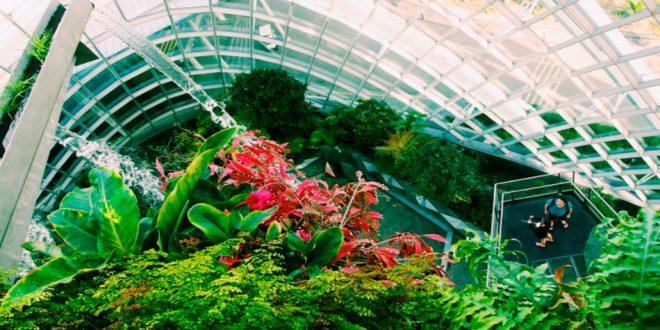 Estudos comprovam que construções verdes são melhor opção de negócio imobiliário