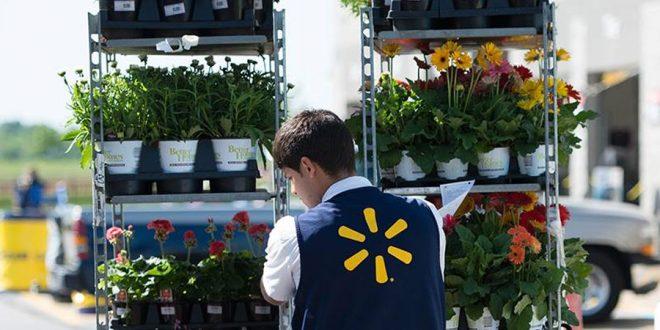 Walmart relata progresso em meta de energia renovável, redução de resíduos e aumento da sustentabilidade