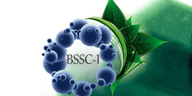 Química Sustentável é tema de simpósio internacional no interior de São Paulo