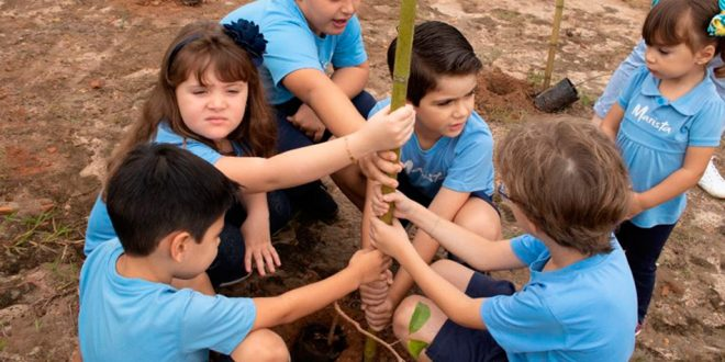 Crianças ajudam a plantar 4 mil árvores em Ribeirão Preto